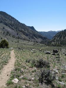 Yellowstone-Black Canyon Trail View