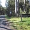 Yosemite Bridalveil Creek Campground