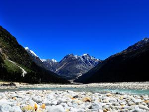 Yumthang Valley Holiday Package Photos
