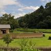 Yuzuki Castle