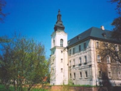 Zabór's Palace