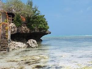 Incredible Zanzibar Photos