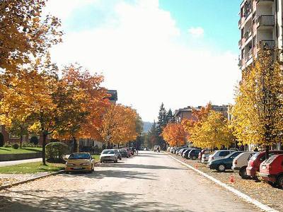 Zavidovici Town