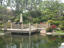 Zig-Zag Bridge At Earl Burns Miller Japanese Garden