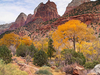 Zion Canyon Entrance