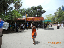 Zoo Area View