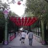Zhizuyuan Bridge