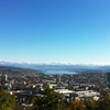 Zurich From Waidberg
