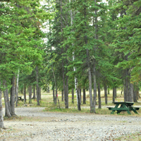 Golden Bear Rv Park & Motel