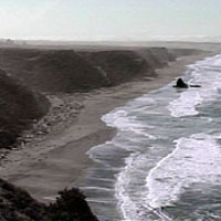 Manchester Beach Mendocino Coast Koa