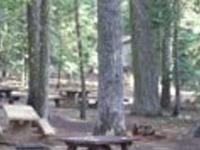 Mendocino Plaskett Meadows Campground