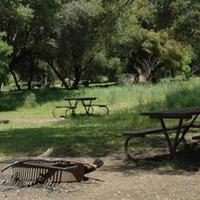 Sequoia Potwisha Campground