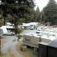 Sylvan Harbor Rv Park And Cabins