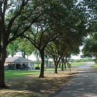 Maxie's Campground