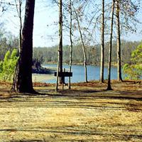 Mimosa Landing Campground
