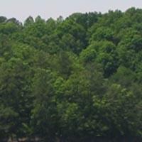 Hueston Woods State Park Campground