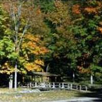 Lyman Run Campground