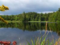 Hapgood Pond Campground