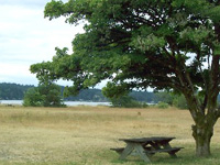 Belfair State Park Campground