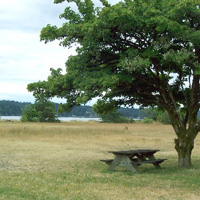 Belfair State Park Campground
