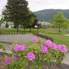 Howard Miller Steelhead County Park