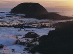 2 Day Great Ocean Road & Phillip Island Tour Photos