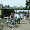 Ale Tasting Bike Tour London +/- afternoon tea picnic  (PRIVATE)