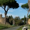 Ancient Rome Guided Tour