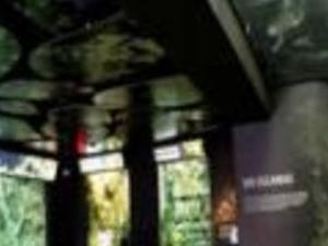 Aquarium, Science & Technology Photos