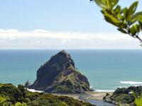 Auckland Adventure