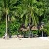 Cham Island - Scuba Diving