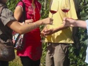 Chianti Wine Tour Photos