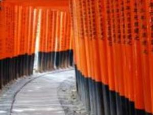 City of Culture Kyoto Photos