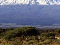 Climb Mt. Kilimanjaro via Rongai Route for 6 days / 5 nights