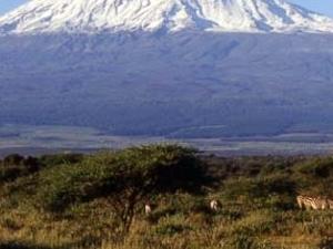 Climb Mt. Kilimanjaro via Rongai Route for 6 days / 5 nights Photos