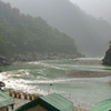 Corbett Wildlife and Camping at Rishikesh