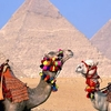 Day Trip to Cairo from Sharm El Sheikh by Road