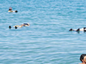 Dead Sea Spas Full Day Tour Photos
