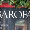 Discovering Garofalo - the Raphael of Ferrara - in his town