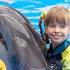 Dolphin Aqua Club Tour
