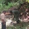 Environmental Conservation in Kenya
