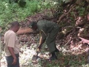 Environmental Conservation in Kenya Photos