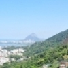 Favela Tour Experience