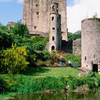 Guided Cork 1 day tour