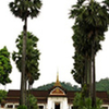 Half Day Museum Of Luang Prabang From Hotel Inside Luang Prabang City Only