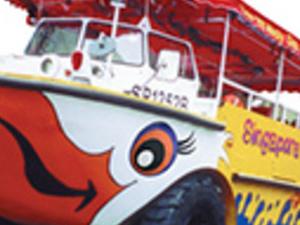 Half Day The Original Singapore Ducktours Photos