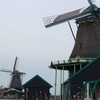 Holland Tulips and Windmills Day Trip from Amsterdam