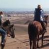 Horseback Riding, Tour in Private