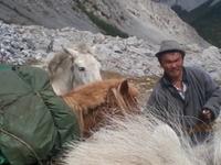 Horse trekking to Khovsgol Lake