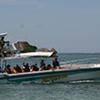Isla Del Pirata, Day Tour
